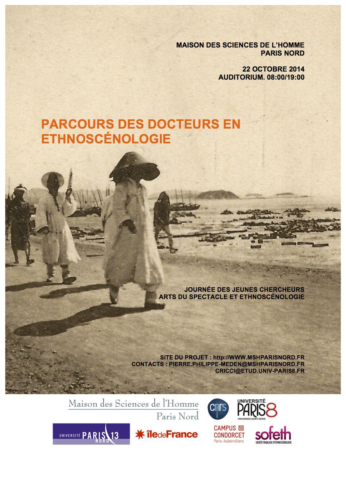 Le parcours des docteurs en ethnoscénologie