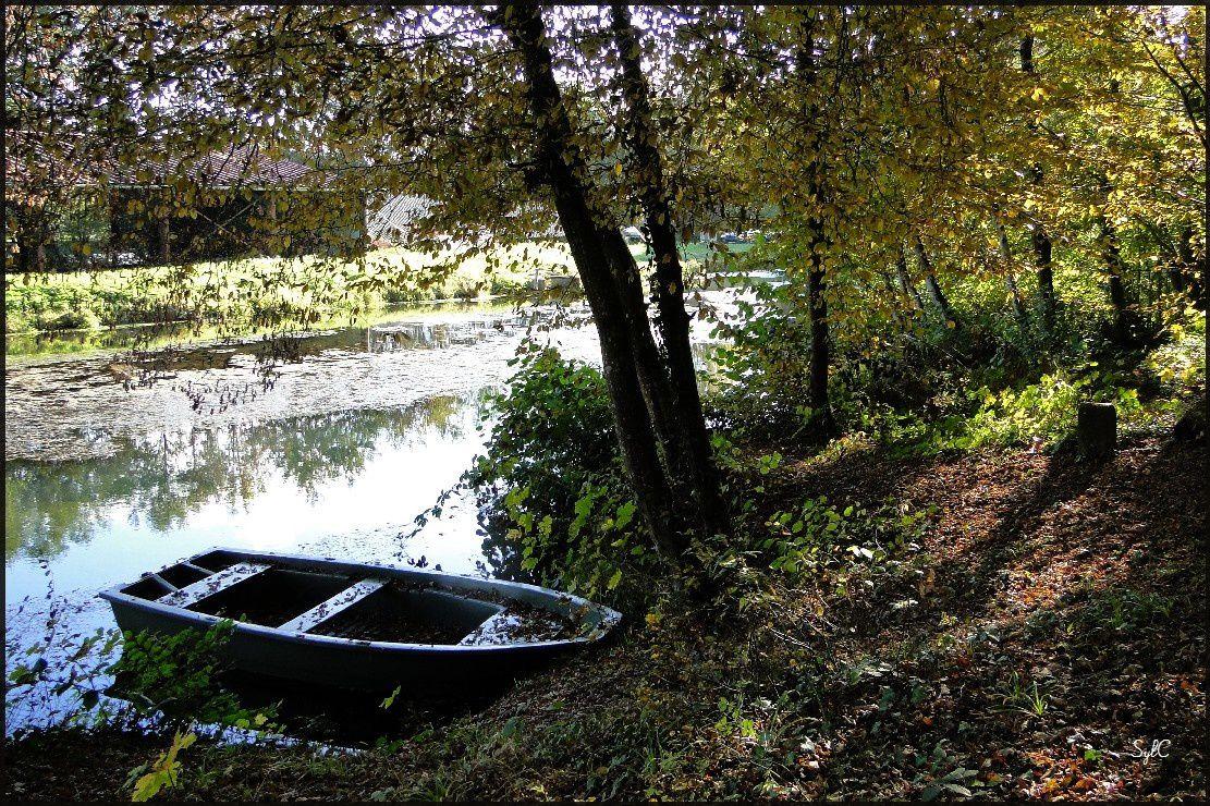 Au bord de l'eau... près de Lure (70)...