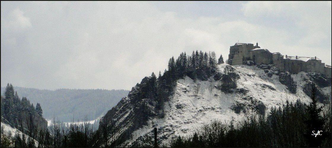Chateau de Joux...