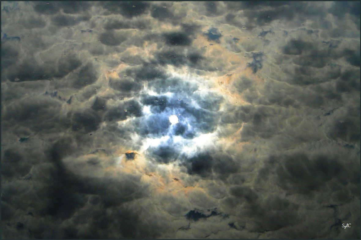 Reflet du soleil dans un étang...