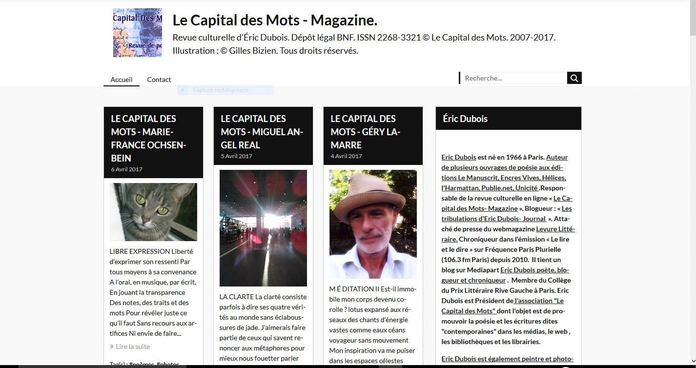 Le Capital des Mots, Magazine .  - DR
