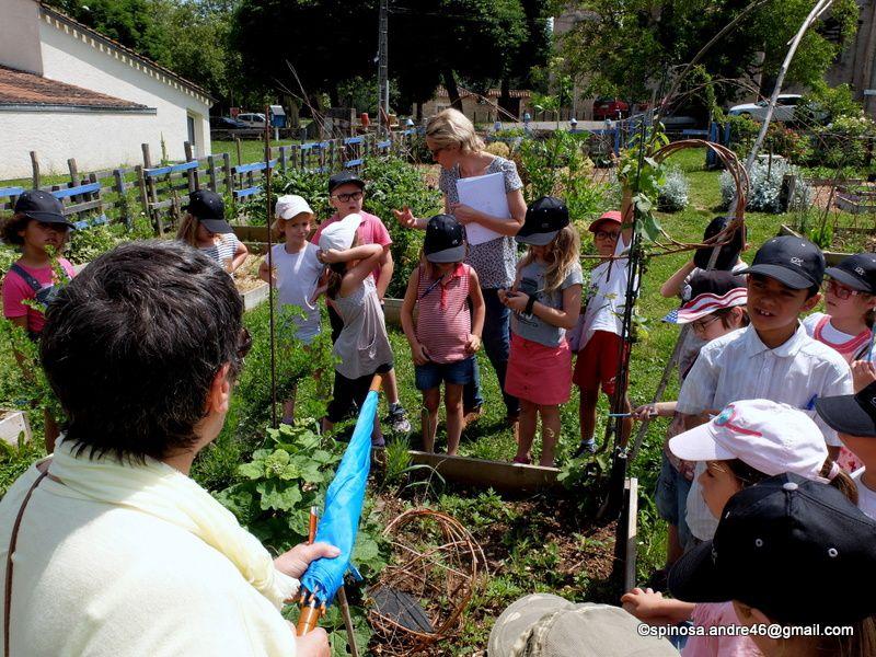 un premier atelier avec les enfants du groupe scolaire maurice faure