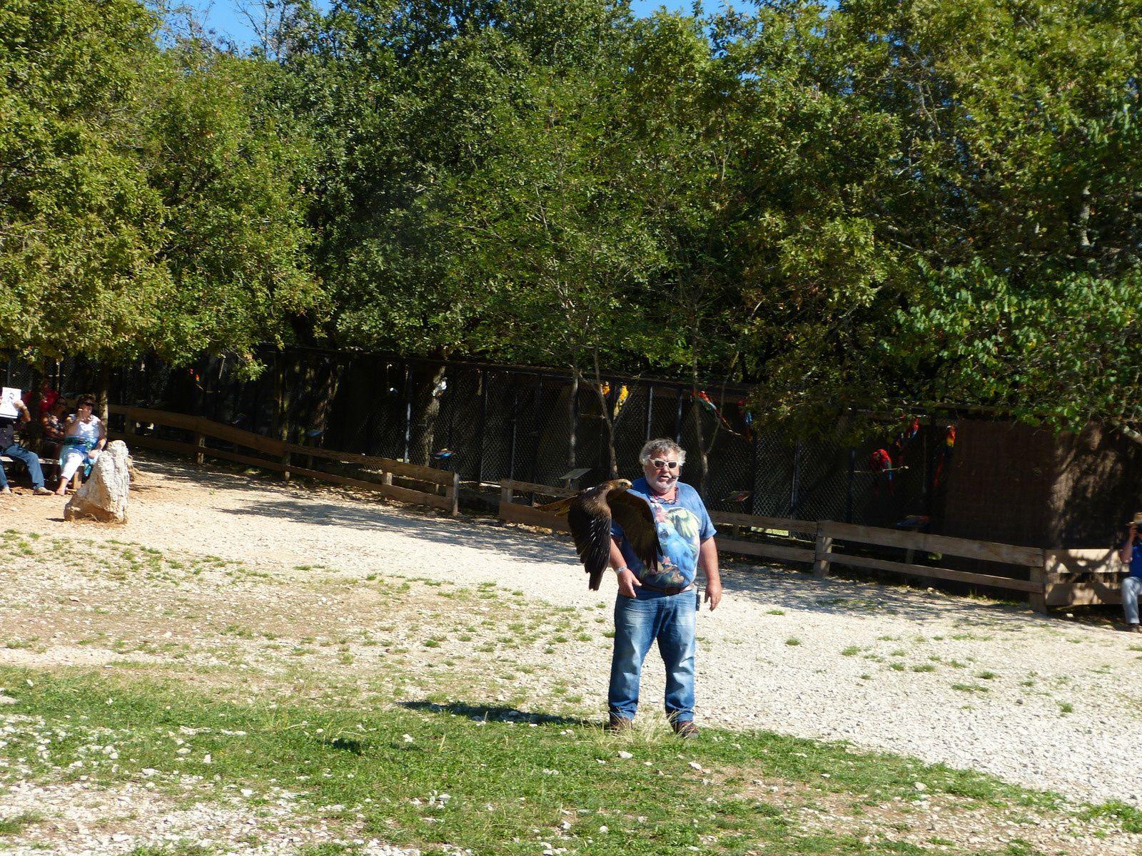 Remerciements à mon ami Jean Louis BERTHET, pour sa magnifique présentation au rochers des aigles à ROCAMADOUR (Lot) et sa passion des oiseaux...