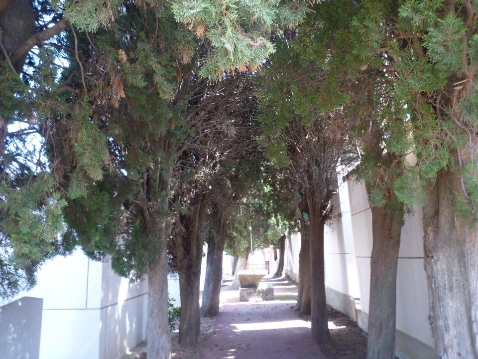 Le cimetière là où repose Lisa..
