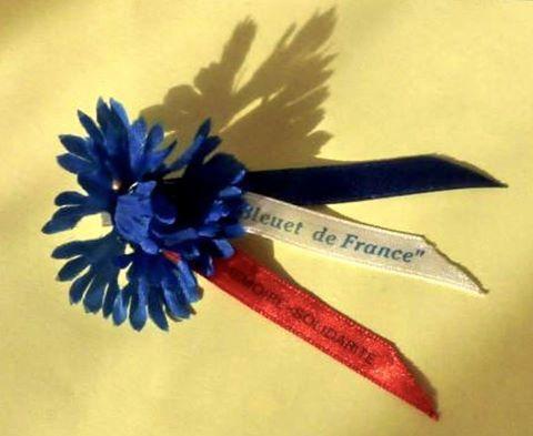 Le Bleuet fleur du Souvenir...