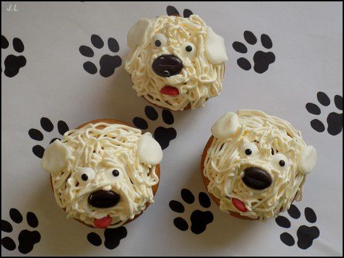 Cupcakes bichon