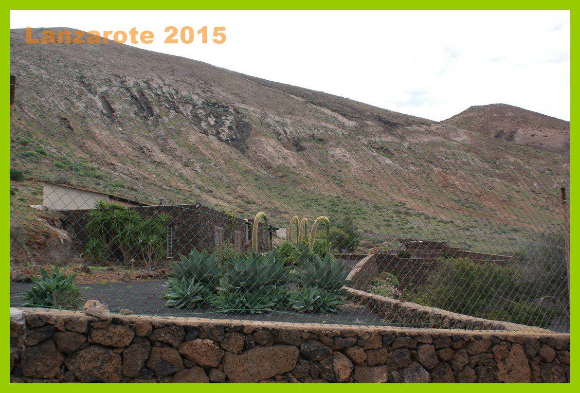 Lanzarote 2015.Randonnée Caldera Montana Blanca.Jour 5