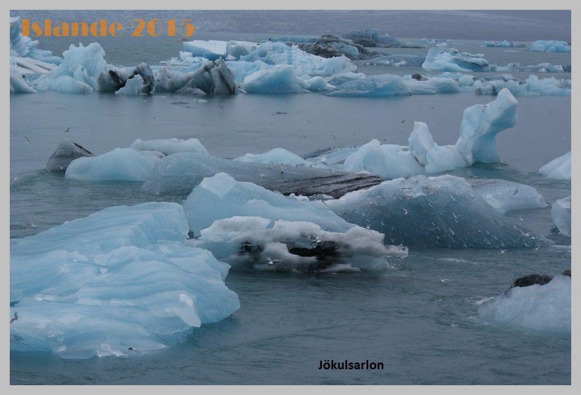 Islande 2015.Djupivogur-Kirkjubaejarklaustur.Jour 7