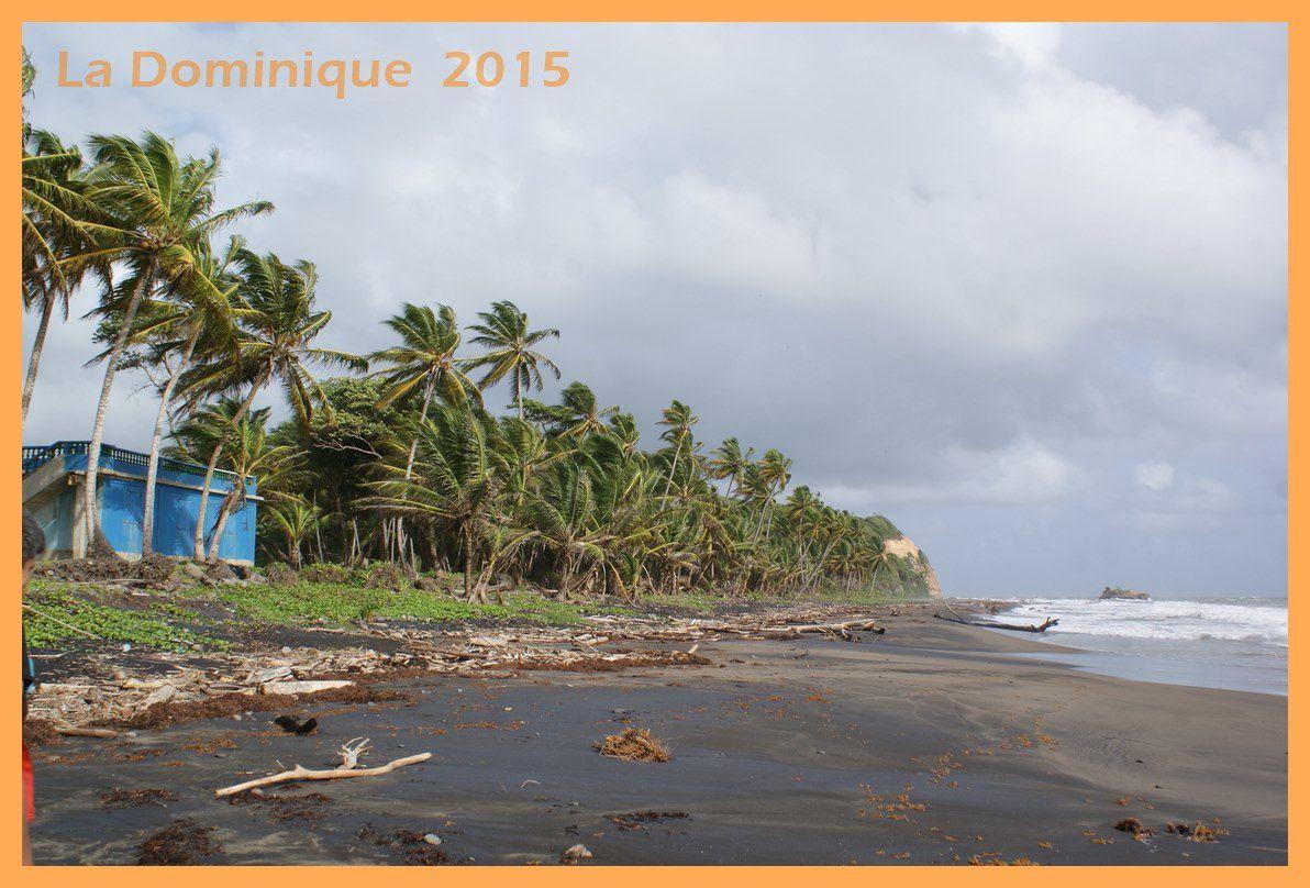 La Dominique 2015. Côte Nord-Est de Calibishie à Roseau en passant par le centre de l'île.Jour 3