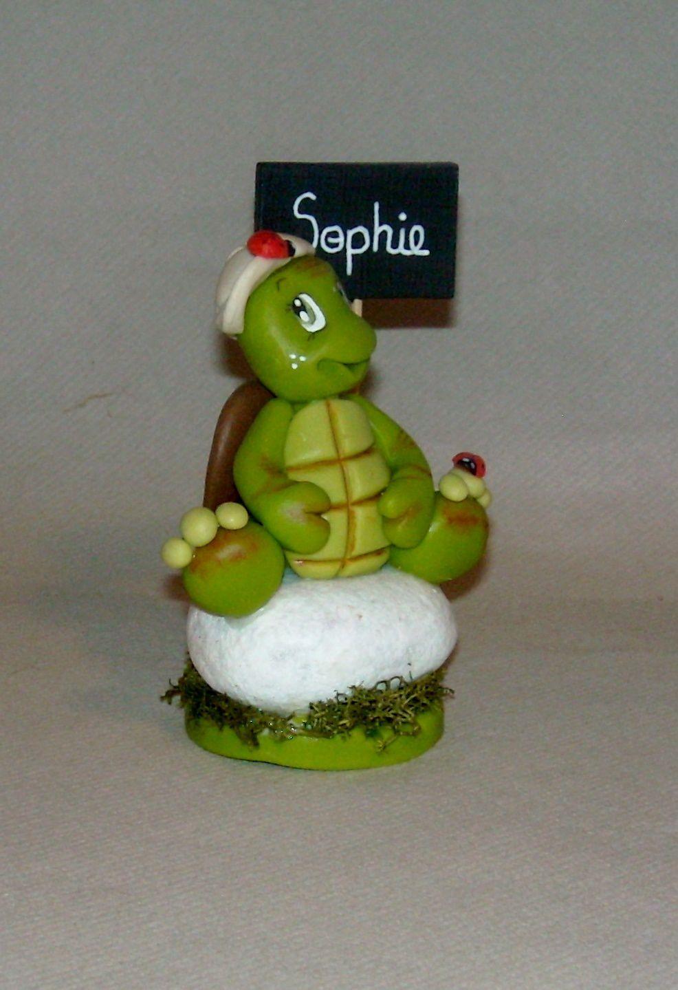 Petites tortues sur galet