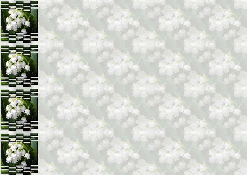 Muguet Incredimail &amp&#x3B; Papier A4 h l &amp&#x3B; outlook &amp&#x3B; enveloppe &amp&#x3B; 2 cartes A5 ~ fleurs_maigloeckchen