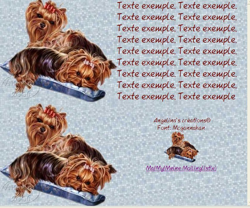 Yorkies Incredimail &amp&#x3B; Papier A4 h l &amp&#x3B; outlook &amp&#x3B; enveloppe &amp&#x3B; 2 cartes A5 &amp&#x3B; signets 3 langues  yorkies_lap_of_luxury_egs1_171