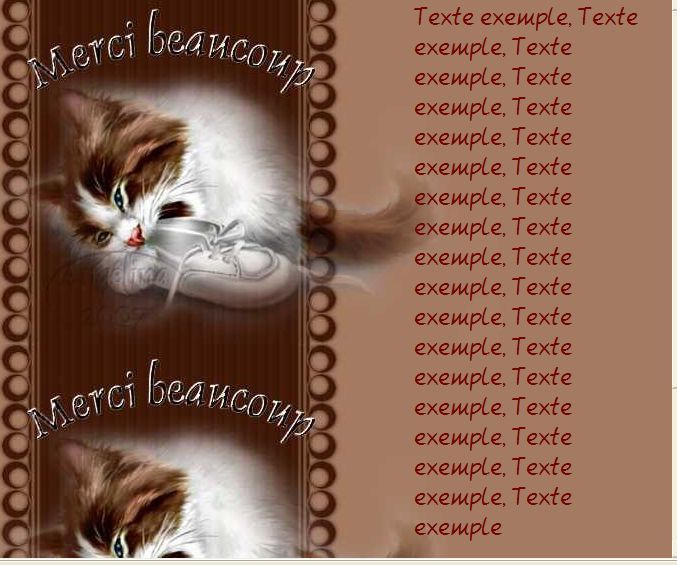Merci beaucoup Chat Incredimail &amp&#x3B; outlook &amp&#x3B; A4 h l &amp&#x3B; enveloppe &amp&#x3B; 2 cartes A5 &amp&#x3B; signets  merci_beaucoup_chat_kat_2007_020237