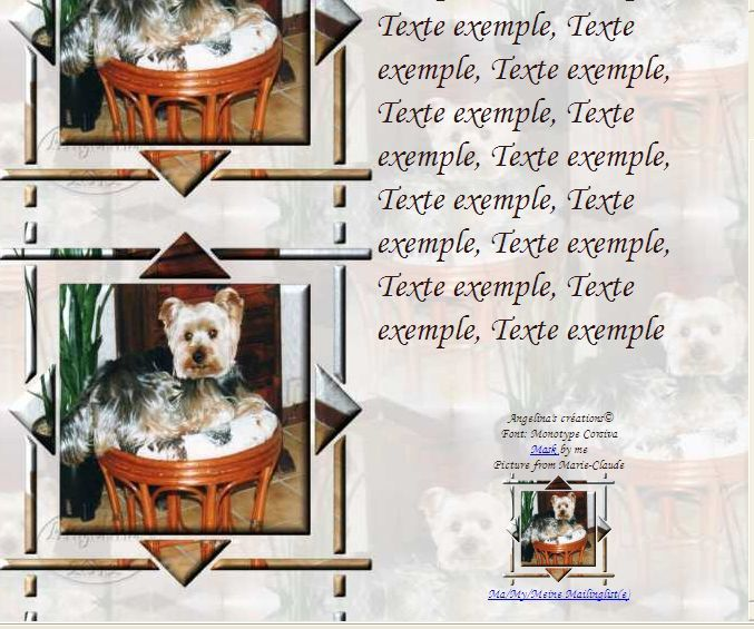 Chien York Incredimail &amp&#x3B; outlook &amp&#x3B; Papier A4 h l &amp&#x3B; enveloppe &amp&#x3B; 2 cartes A5 &amp&#x3B; signets 3 langues   chien_york_filou_img027_00