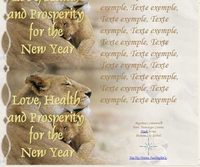 Love, Health and Prosperity for the New Year IM &amp&#x3B; A4 h l &amp&#x3B; outlook &amp&#x3B; enveloppe &amp&#x3B; 2 cartes A5 &amp&#x3B; signets  love_health_new_year_lionneavecpetit_image0033_00_leo