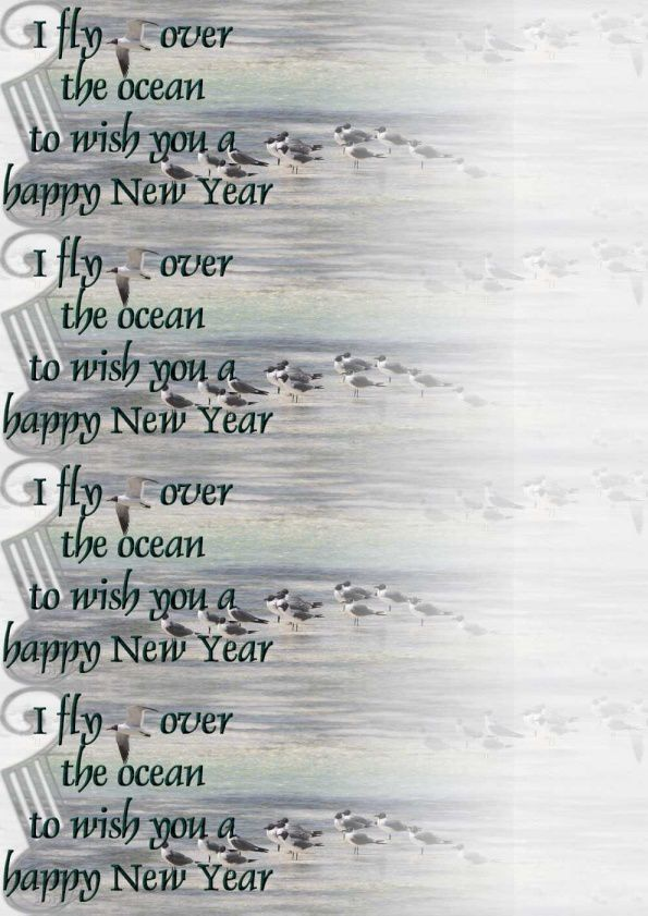 I fly over the ocean New Year Incredimail &amp&#x3B; Papier A4 h l &amp&#x3B; outlook &amp&#x3B; enveloppe &amp&#x3B; 2 cartes A5  i_fly_over_happy_new_year_ois_montages13534_00_leo