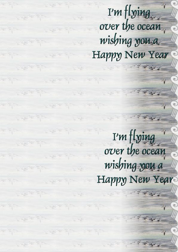 I'm flying over the ocean wishing you a Happy New Year IM&amp&#x3B;A4 h l &amp&#x3B; outlook &amp&#x3B; enveloppe &amp&#x3B; 2 cartes A5  im_flying_happy_new_year_ois_montages13534_00_leo