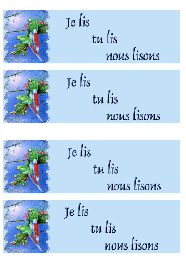 Perroquets Incredimail &amp&#x3B; Papier A4 h l &amp&#x3B; outlook &amp&#x3B; enveloppe &amp&#x3B; 2 cartes A5 &amp&#x3B; signets 3 langues  red_tail_macaws