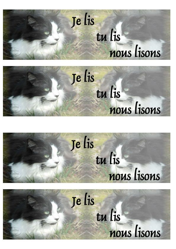 Chat Incredimail &amp&#x3B; Papier A4 h l &amp&#x3B; outlook &amp&#x3B; enveloppe &amp&#x3B; 2 cartes A5 &amp&#x3B; signets 3 langues     black_and_white_kitty_in_color