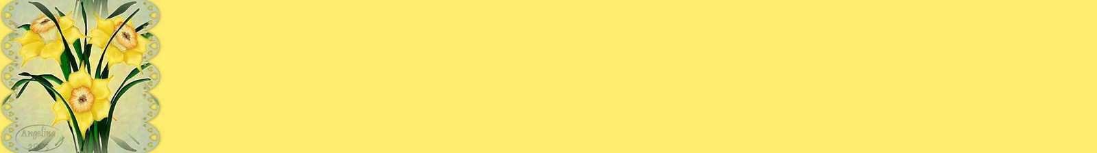 Fleurs jaune (Jonquilles) Incredimail &amp&#x3B; Papier A4 h l &amp&#x3B; outlook &amp&#x3B; enveloppe &amp&#x3B; 2 cartes A5 &amp&#x3B; signets 3 langues   2daffodils