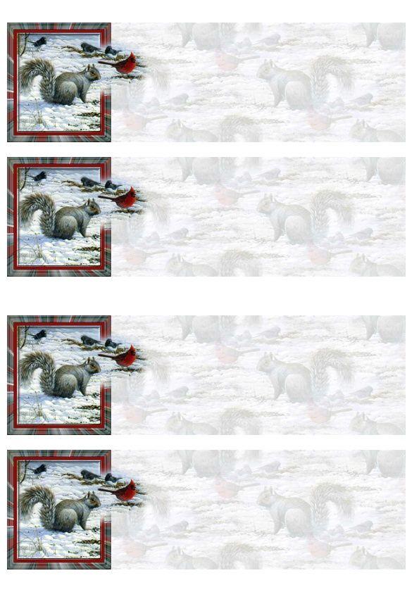Ecureuil oiseau Incredimail &amp&#x3B; Papier A4 h l &amp&#x3B; outlook &amp&#x3B; enveloppe &amp&#x3B; 2 cartes A5 &amp&#x3B; signets 3 langues   wilgoe1150_sortant_du_cadre