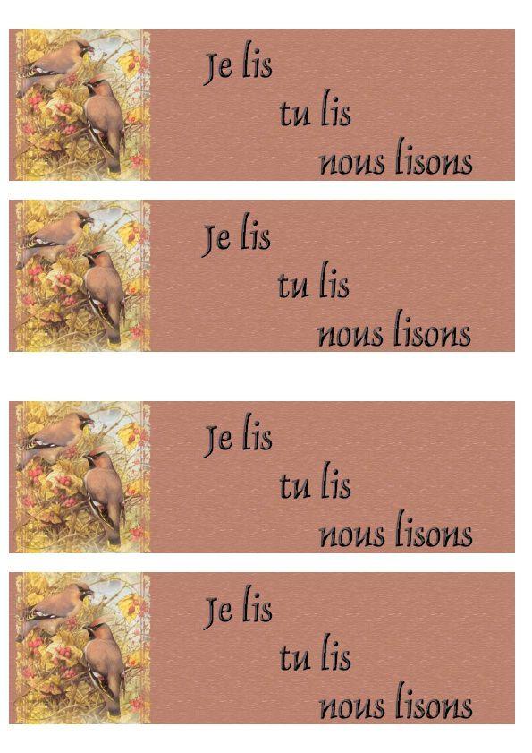 Oiseaux Incredimail &amp&#x3B; Papier A4 h l &amp&#x3B; outlook &amp&#x3B; enveloppe &amp&#x3B; 2 cartes A5 &amp&#x3B; signets 3 langues   mb_birds_berries