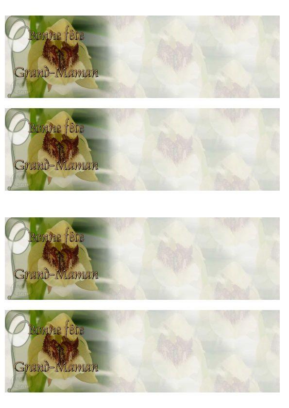 Bonne fête Grand-Maman Orchidée Incredimail &amp&#x3B; A4 h l &amp&#x3B; outlook &amp&#x3B; enveloppe &amp&#x3B; 2 cartes A5 &amp&#x3B; signets  fete_grand_maman_orch_p1120454_00