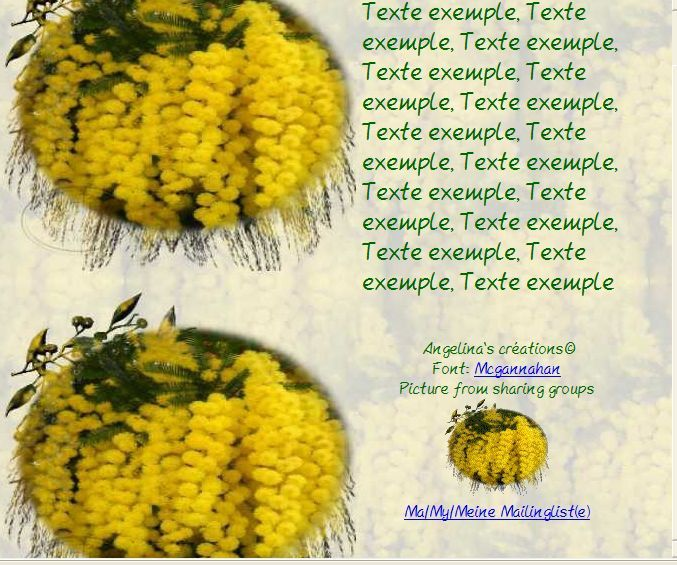Mimosa Incredimail &amp&#x3B; Papier A4 h l &amp&#x3B; outlook &amp&#x3B; enveloppe &amp&#x3B; 2 cartes A5 &amp&#x3B; signets 3 langues mimosa_117667332bjqfgn
