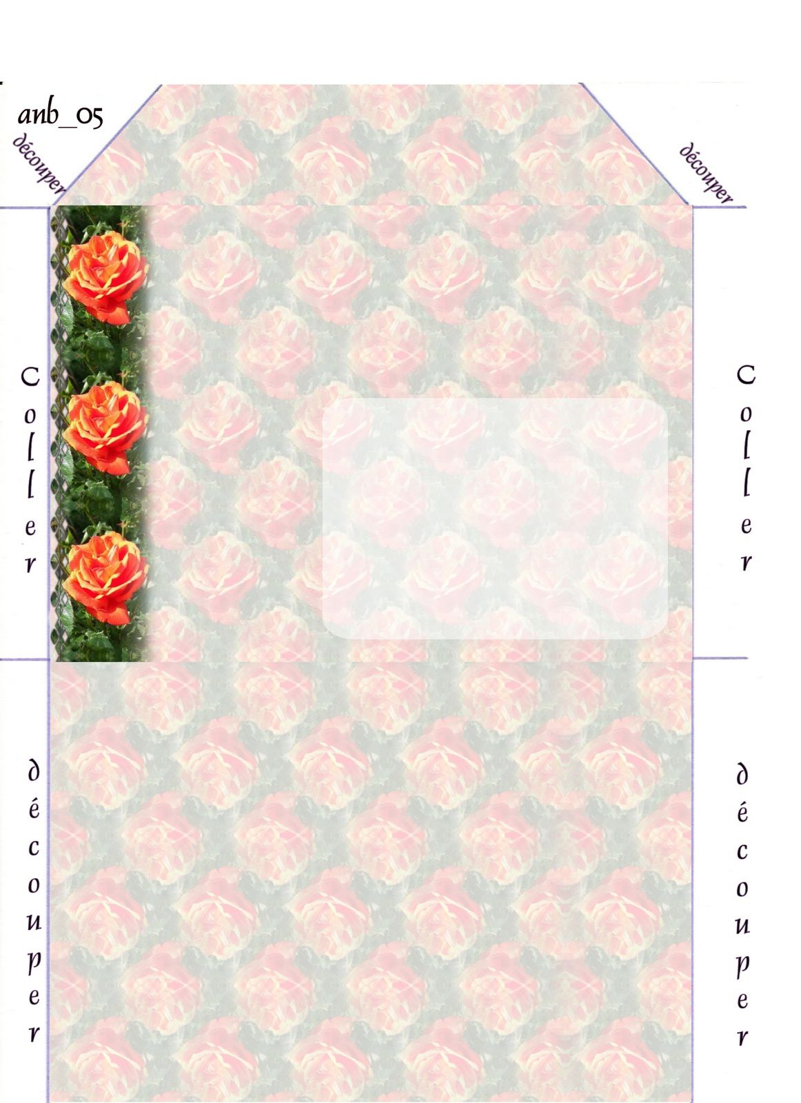 Rose orange Incredimail &amp&#x3B; Papier A4 h l &amp&#x3B; outlook &amp&#x3B; enveloppe &amp&#x3B; 2 cartes A5 &amp&#x3B; signets 3 langues    rose_orange_daisy_gedc1318_00