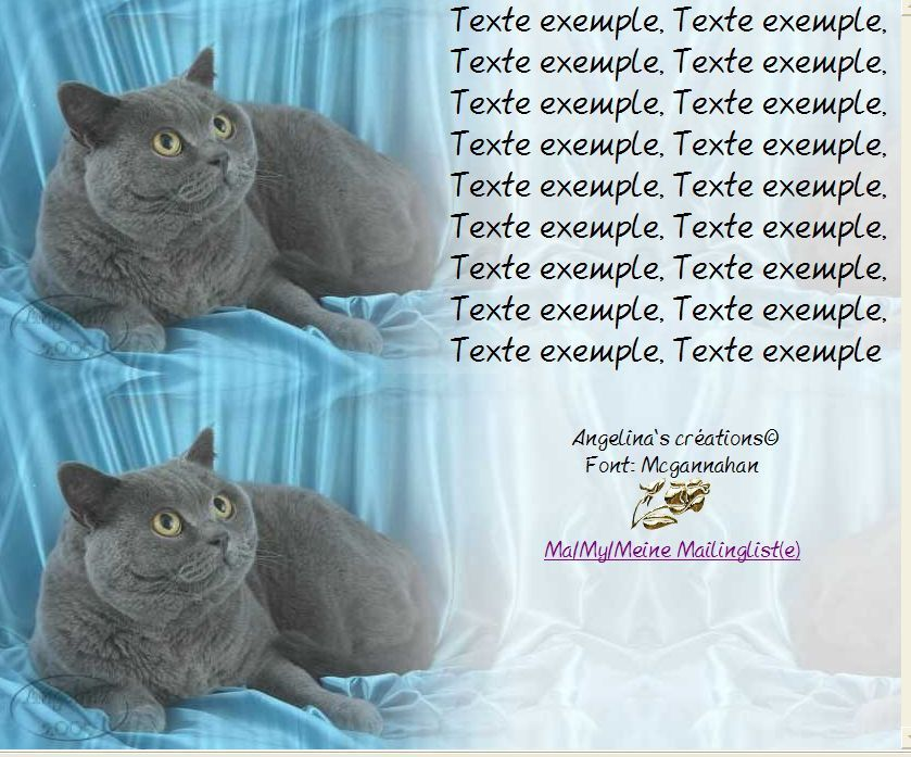 Chartreux Chat Incredimail &amp&#x3B; Papier A4 h l &amp&#x3B; outlook &amp&#x3B; enveloppe &amp&#x3B; 2 cartes A5 &amp&#x3B; signets 3 langues    v2ol1zf5174