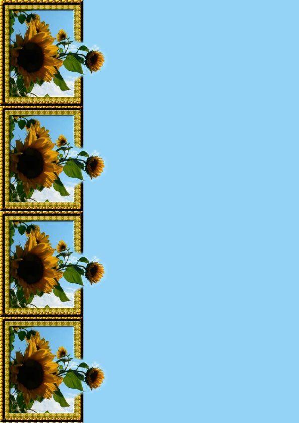 Tournesols Incredimail &amp&#x3B; Papier A4 h l &amp&#x3B; outlook &amp&#x3B; enveloppe &amp&#x3B; 2 cartes A5 &amp&#x3B; signets 3 langues   tourn_03sept06gumpy0000012_sdc