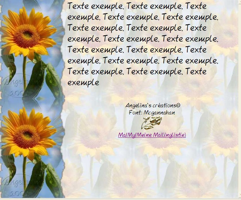 Tournesol Incredimail &amp&#x3B; Papier A4 h l &amp&#x3B; outlook &amp&#x3B; enveloppe &amp&#x3B; 2 cartes A5 &amp&#x3B; signets 3 langues   tourn_sed_sunflower_2