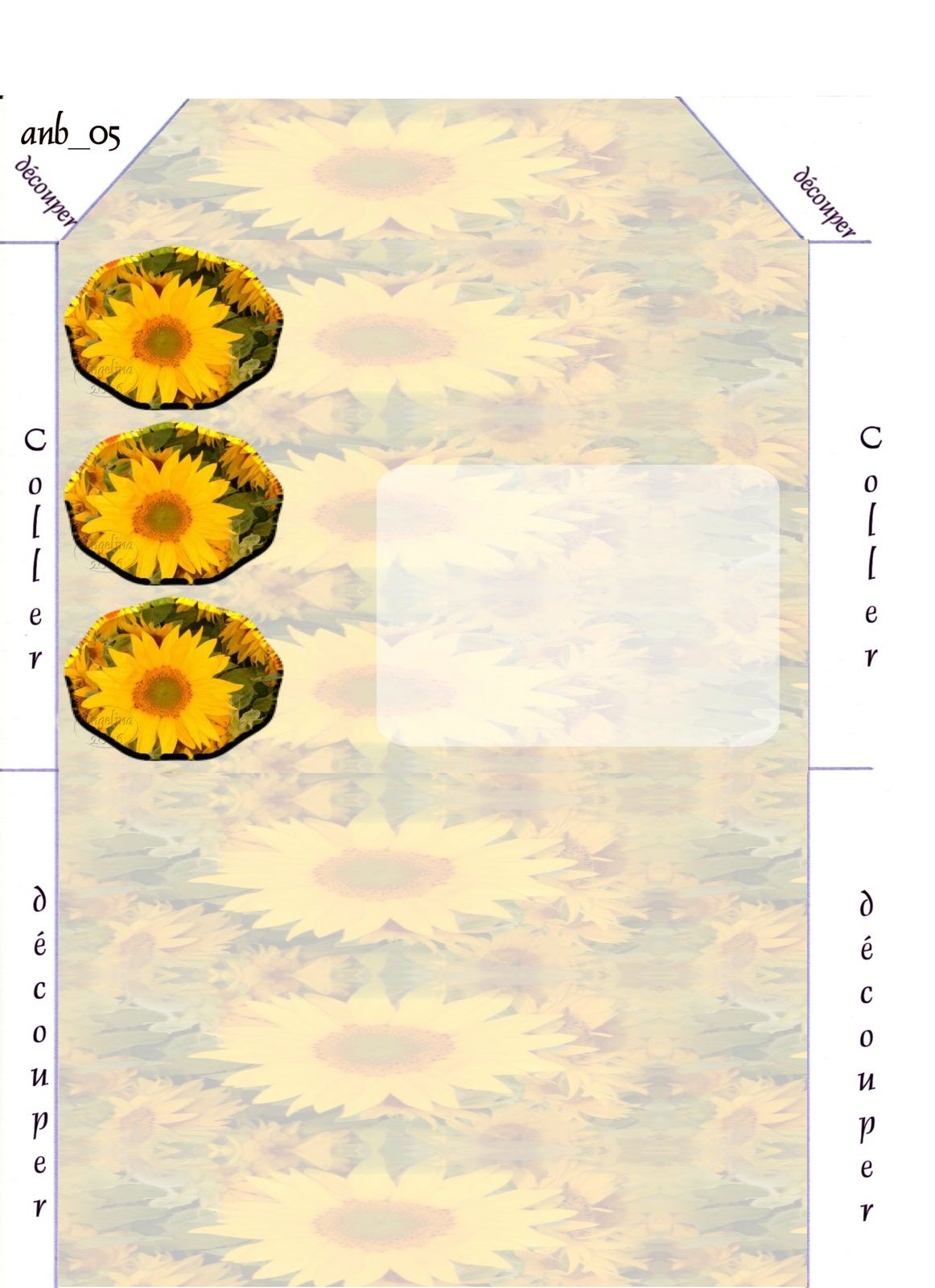 Tournesol Incredimail &amp&#x3B; Papier A4 h l &amp&#x3B; outlook &amp&#x3B; enveloppe &amp&#x3B; 2 cartes A5 &amp&#x3B; signets 3 langues    tournesol_murzeau_fleurs2005