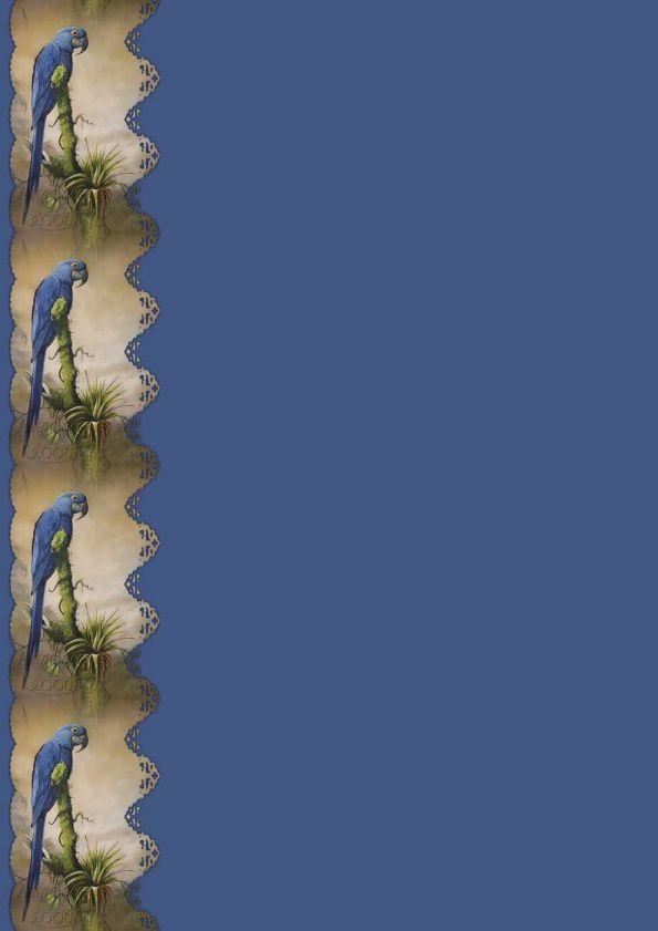 Perroquet Incredimail &amp&#x3B; Papier A4 h l &amp&#x3B; outlook &amp&#x3B; enveloppe &amp&#x3B; 2 cartes A5 &amp&#x3B; signets 3 langues   ois_hyacinth_macaw_art2