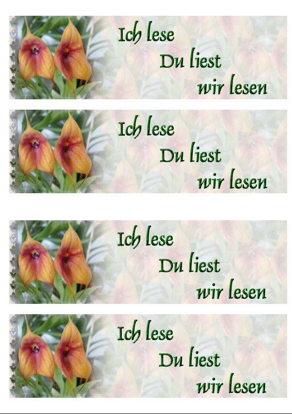 Orchidée masdevalia Incredimail &amp&#x3B; Papier A4 h l &amp&#x3B; outlook &amp&#x3B; enveloppe &amp&#x3B; 2 cartes A5 &amp&#x3B; signets 3 langues  orch_masdevalia_jose_dscn5847_00