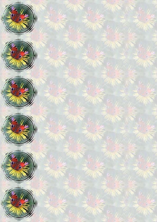 Papillon Incredimail &amp&#x3B; Papier A4 h l &amp&#x3B; outlook &amp&#x3B; enveloppe &amp&#x3B; 2 cartes A5 &amp&#x3B; signets 3 langues  sf_colors