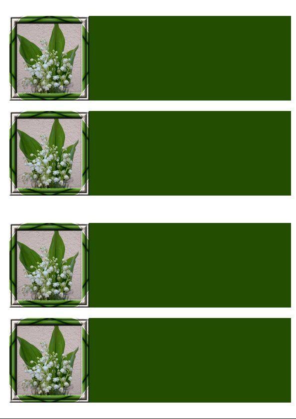Muguet Incredimail &amp&#x3B; Papier A4 h l &amp&#x3B; outlook &amp&#x3B; enveloppe &amp&#x3B; 2 cartes A5 fleurs_muguet_77
