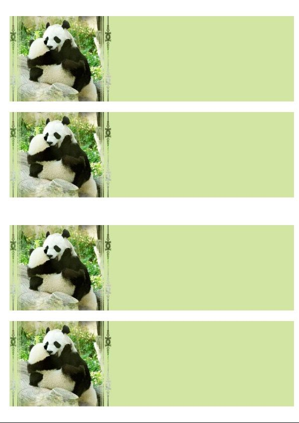 Pandas Incredimail &amp&#x3B; Papier A4 h l &amp&#x3B; outlook &amp&#x3B; enveloppe &amp&#x3B; 2 cartes A5 &amp&#x3B; signets 3 langues an_6fe556
