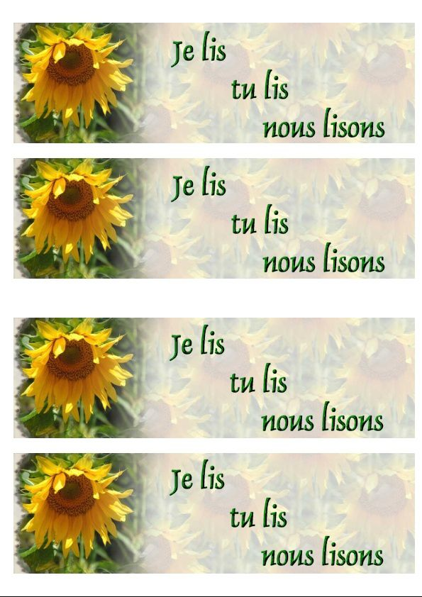 Tournesol Incredimail &amp&#x3B; outlook &amp&#x3B; Papier A4 h l &amp&#x3B; enveloppe &amp&#x3B; 2 cartes A5 &amp&#x3B; signets 3 langues fl_tournesol_dscn2707_00