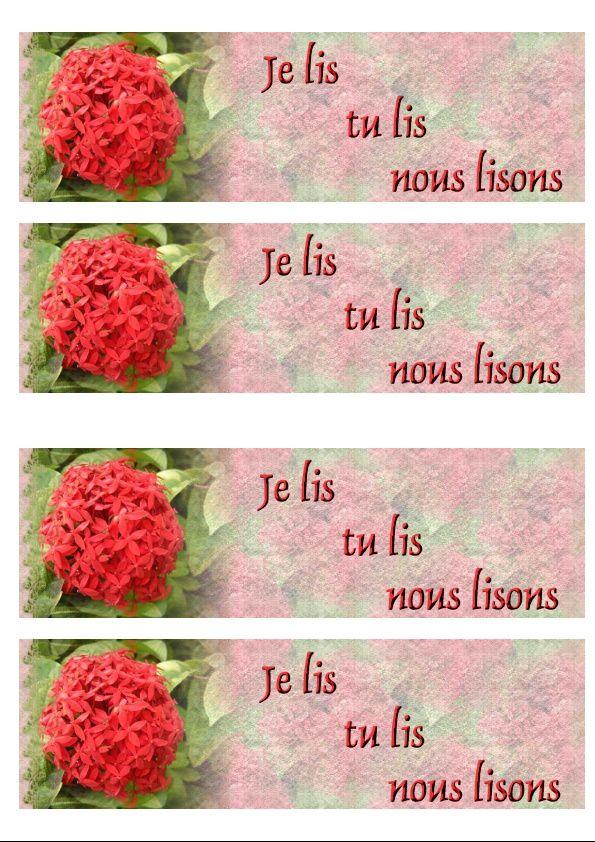 Fleur rouge Incredimail &amp&#x3B; outlook &amp&#x3B; Papier A4 h l &amp&#x3B; enveloppe &amp&#x3B; 2 cartes A5 &amp&#x3B; signets 3 langues   fleur_micheline_des_fleurs_de_mon_ile_2