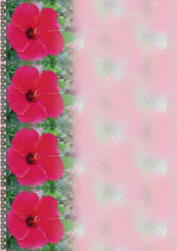 Fleurs Hibiscus Incredimail &amp&#x3B; Papier A4 h l &amp&#x3B; outlook &amp&#x3B; enveloppe &amp&#x3B; 2 cartes A5 &amp&#x3B; signets 3 langues  fleur_hibiscus_00_micheline
