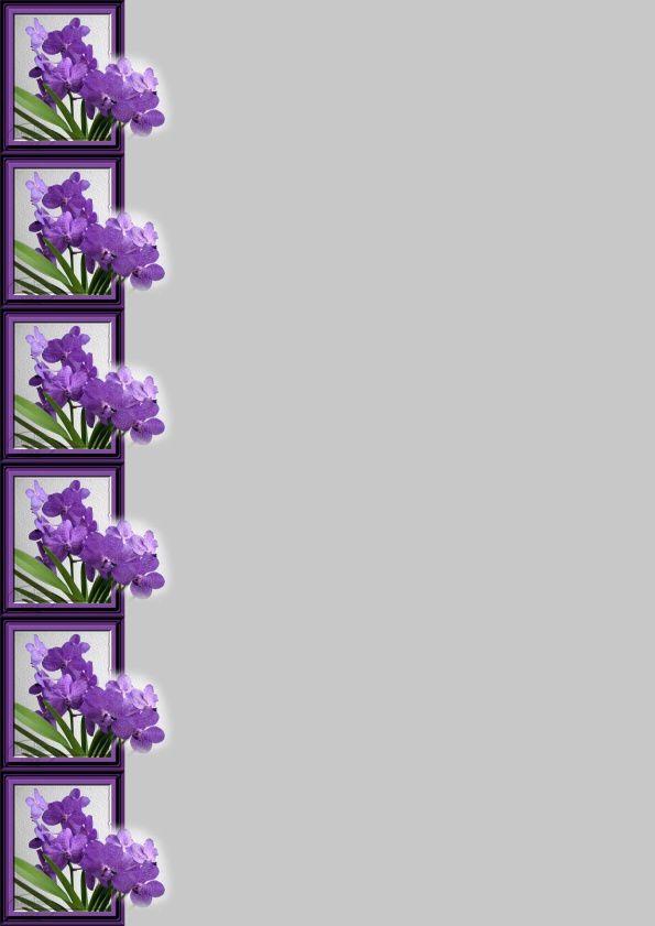 Orchidée Vanda Incredimail &amp&#x3B; Papier A4 h l &amp&#x3B; outlook &amp&#x3B; enveloppe &amp&#x3B; 2 cartes A5 &amp&#x3B; signets 3 langues 436d288f06609_sdc