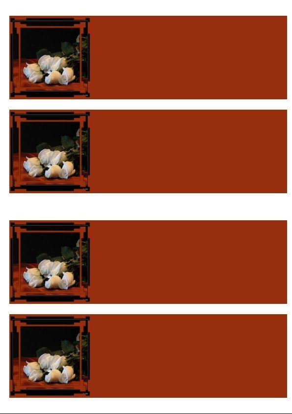 Bouquet de roses blanches Incredimail &amp&#x3B; Papier A4 h l &amp&#x3B; outlook &amp&#x3B; enveloppe &amp&#x3B; 2 cartes A5 &amp&#x3B; signets 3 langues  0115