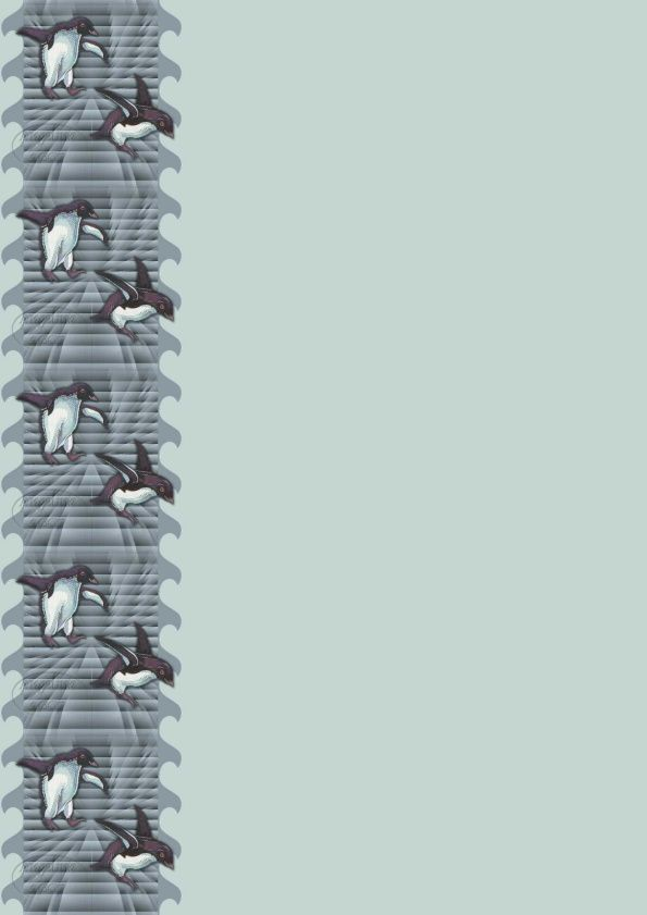 Pinguin Incredimail &amp&#x3B; Papier A4 h l &amp&#x3B; outlook &amp&#x3B; enveloppe &amp&#x3B; 2 cartes A5 &amp&#x3B; signets 3 langues  anm_bergsma_jody_bn_sky_castle