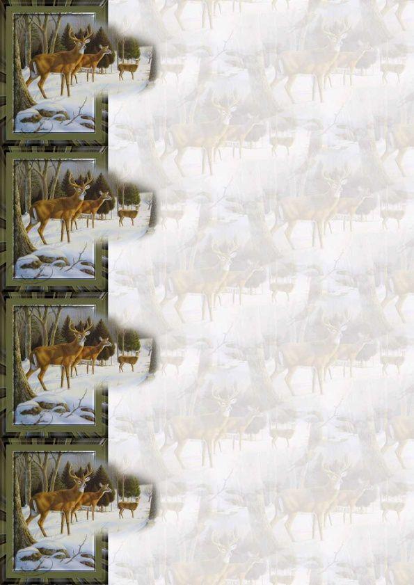 Chevreuil sortant du cadre Incredimail &amp&#x3B; Papier A4 h l &amp&#x3B; outlook &amp&#x3B; enveloppe &amp&#x3B; 2 cartes A5 &amp&#x3B; signets 3 langues  deer3_sortant_du_cadre