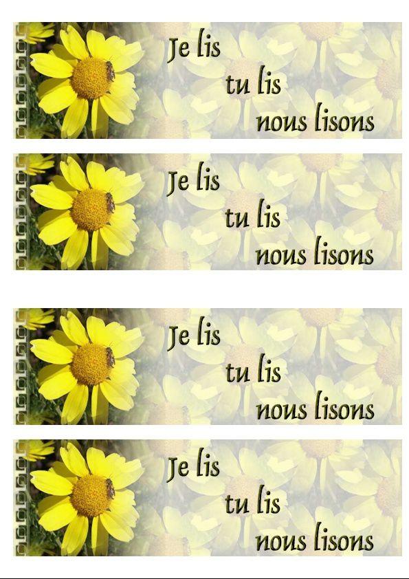 Marguerite jaune Incredimail &amp&#x3B; Papier A4 h l &amp&#x3B; outlook &amp&#x3B; enveloppe &amp&#x3B; 2 cartes A5 &amp&#x3B; signets 3 langues  fleur_margueritebloom_alpilles_00