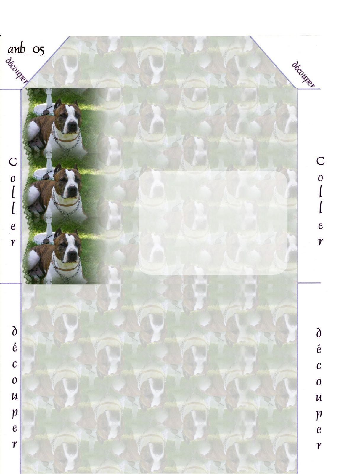 Chien Incredimail &amp&#x3B; Papier A4 h l &amp&#x3B; outlook &amp&#x3B; enveloppe &amp&#x3B; 2 cartes A5 &amp&#x3B; signets 3 langues  chien_thor_p6090057_00