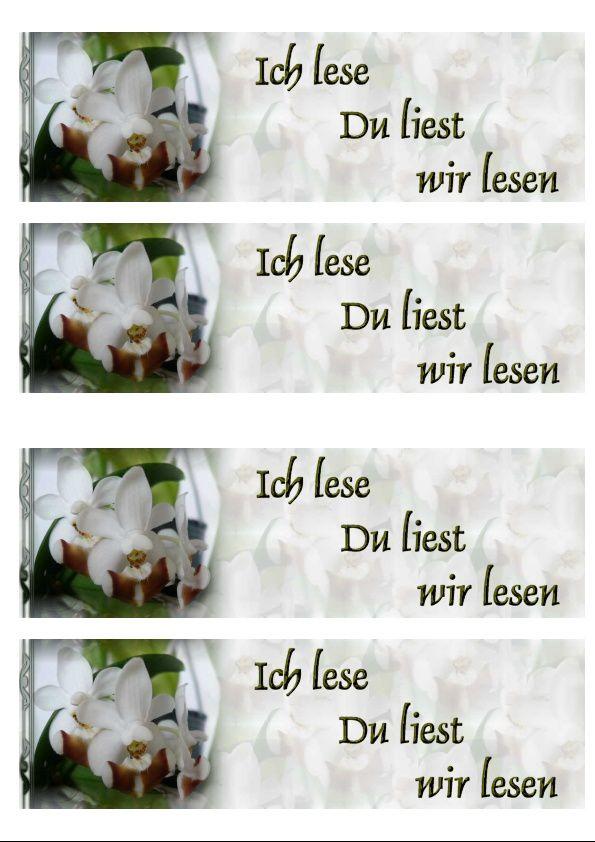 Phalaenopsis lobbii Incredimail &amp&#x3B; Papier A4 h l &amp&#x3B; outlook &amp&#x3B; enveloppe &amp&#x3B; 2 cartes A5 &amp&#x3B; signets 3 langues  orch_phalaenopsis_lobbii_63_00