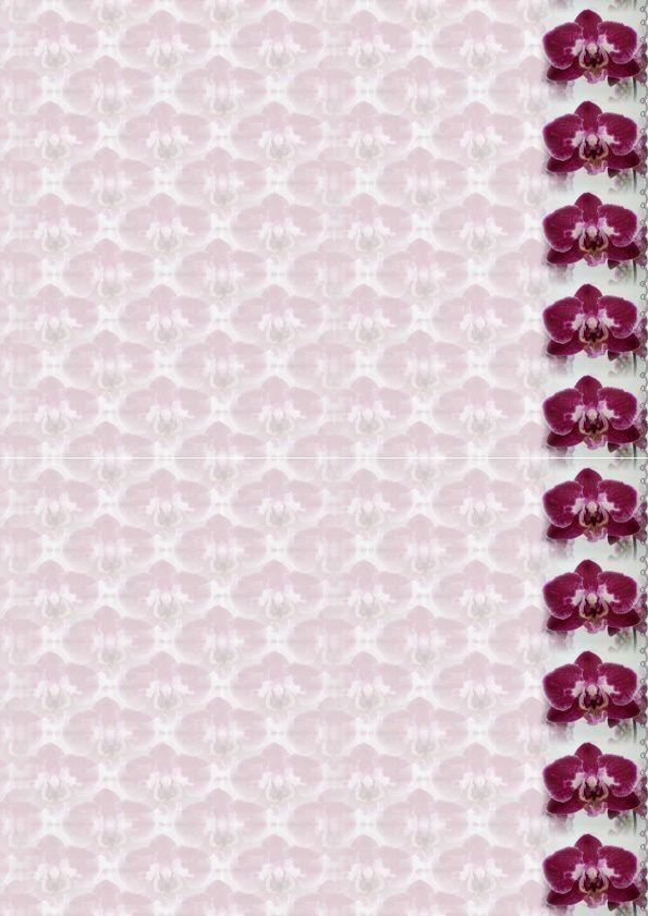 Phalaenopsis mauve Incredimail &amp&#x3B; Papier A4 h l &amp&#x3B; outlook &amp&#x3B; enveloppe &amp&#x3B; 2 cartes A5 &amp&#x3B; signets 3 langues orch_phalaenopsis_mauve_joetch_7_00