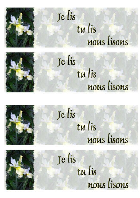 Iris Incredimail &amp&#x3B; Papier A4 h l &amp&#x3B; outlook &amp&#x3B; enveloppe &amp&#x3B; 2 cartes A5 &amp&#x3B; signets 3 langues    fleurs_graceful_iris